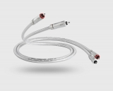 QED Signature Audio 40 - Stereo kabel - 1m